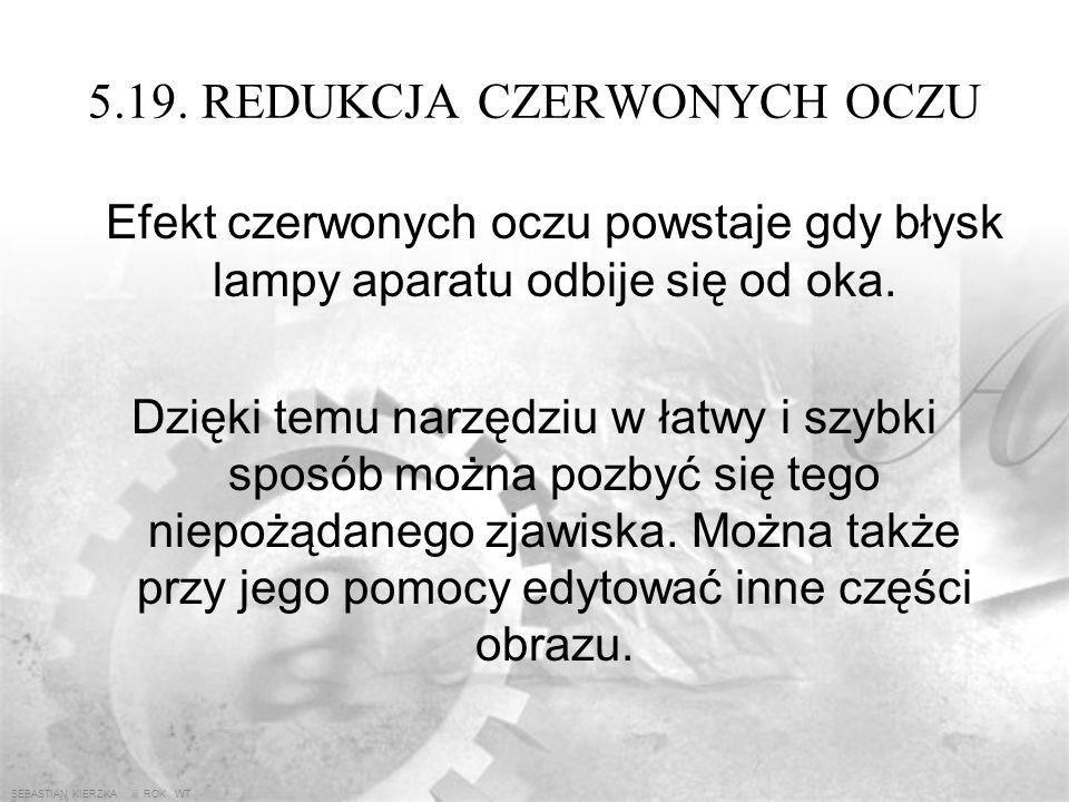 SEBASTIAN KIERZKA iii ROK WT 5.18. SMUŻENIE Narzędzie to imituje rozmazywanie palcem (lub jakimś przedmiotem) obrazu z mokrą jeszcze farbą Opcje kszta
