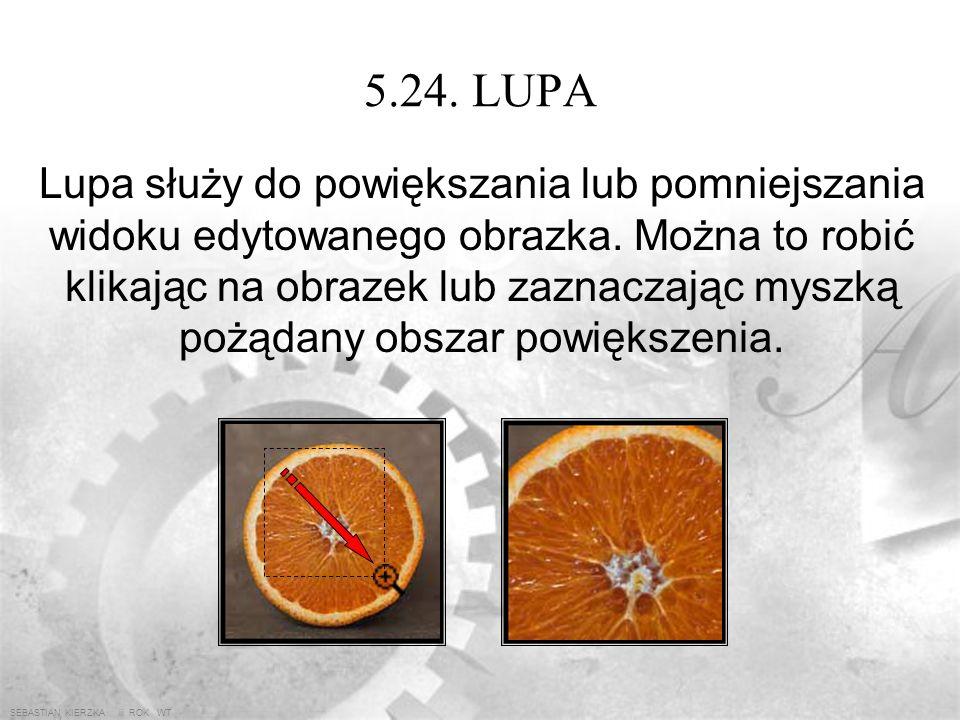 SEBASTIAN KIERZKA iii ROK WT 5.23. RĘKA Ręka służy do przewijania (przesuwania ekranu) po dużym lub bardzo powiększonym obrazku.