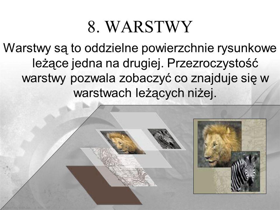 SEBASTIAN KIERZKA iii ROK WT 7.7. LIQUIFY