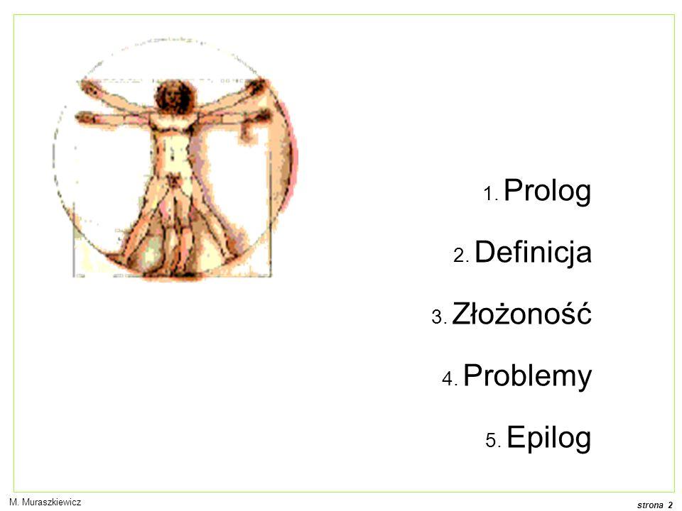 strona 2 1. Prolog 2. Definicja 3. Złożoność 4. Problemy 5. Epilog M. Muraszkiewicz