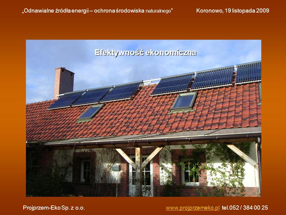 Efektywność ekonomiczna Odnawialne źródła energii – ochrona środowiska naturalnego Koronowo, 19 listopada 2009 Projprzem-Eko Sp. z o.o.www.projprzemek