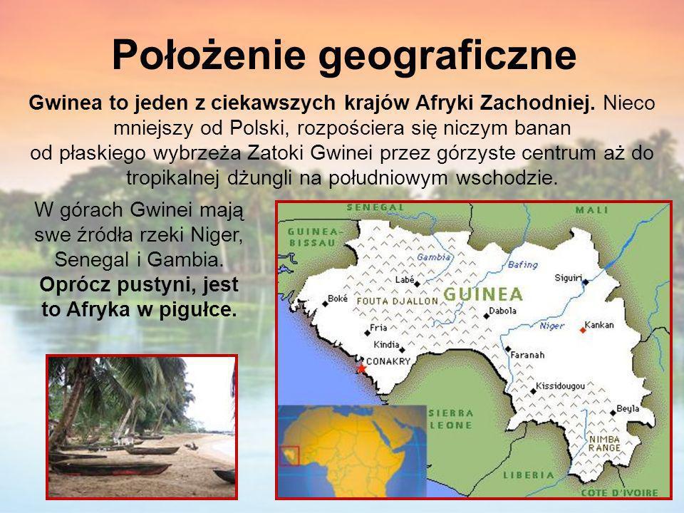 Położenie geograficzne Gwinea to jeden z ciekawszych krajów Afryki Zachodniej. Nieco mniejszy od Polski, rozpościera się niczym banan od płaskiego wyb