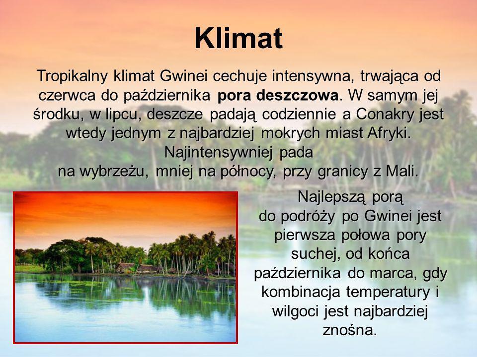 Klimat Tropikalny klimat Gwinei cechuje intensywna, trwająca od czerwca do października pora deszczowa. W samym jej środku, w lipcu, deszcze padają co
