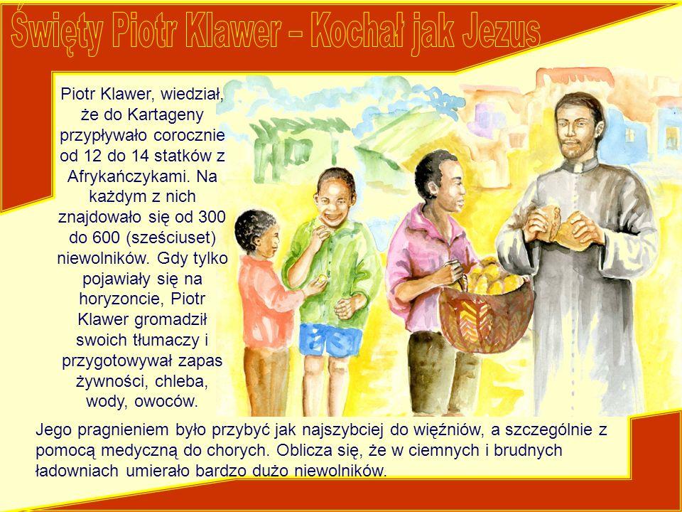 Piotr Klawer, wiedział, że do Kartageny przypływało corocznie od 12 do 14 statków z Afrykańczykami. Na każdym z nich znajdowało się od 300 do 600 (sze