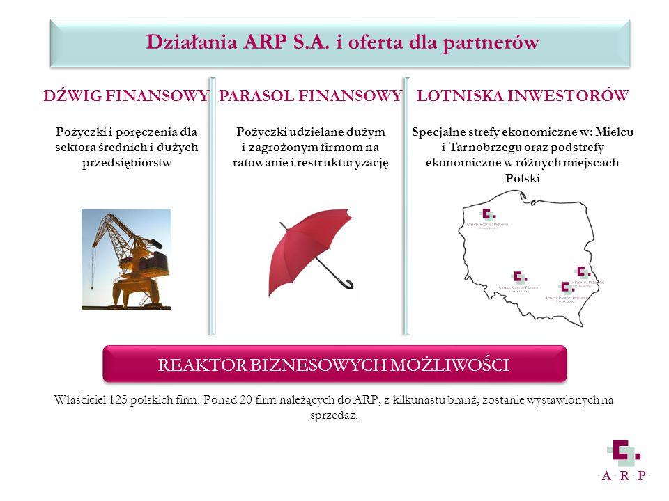 DŹWIG FINANSOWY Pożyczki i poręczenia dla sektora średnich i dużych przedsiębiorstw PARASOL FINANSOWY Pożyczki udzielane dużym i zagrożonym firmom na ratowanie i restrukturyzację LOTNISKA INWESTORÓW Specjalne strefy ekonomiczne w: Mielcu i Tarnobrzegu oraz podstrefy ekonomiczne w różnych miejscach Polski REAKTOR BIZNESOWYCH MOŻLIWOŚCI Właściciel 125 polskich firm.