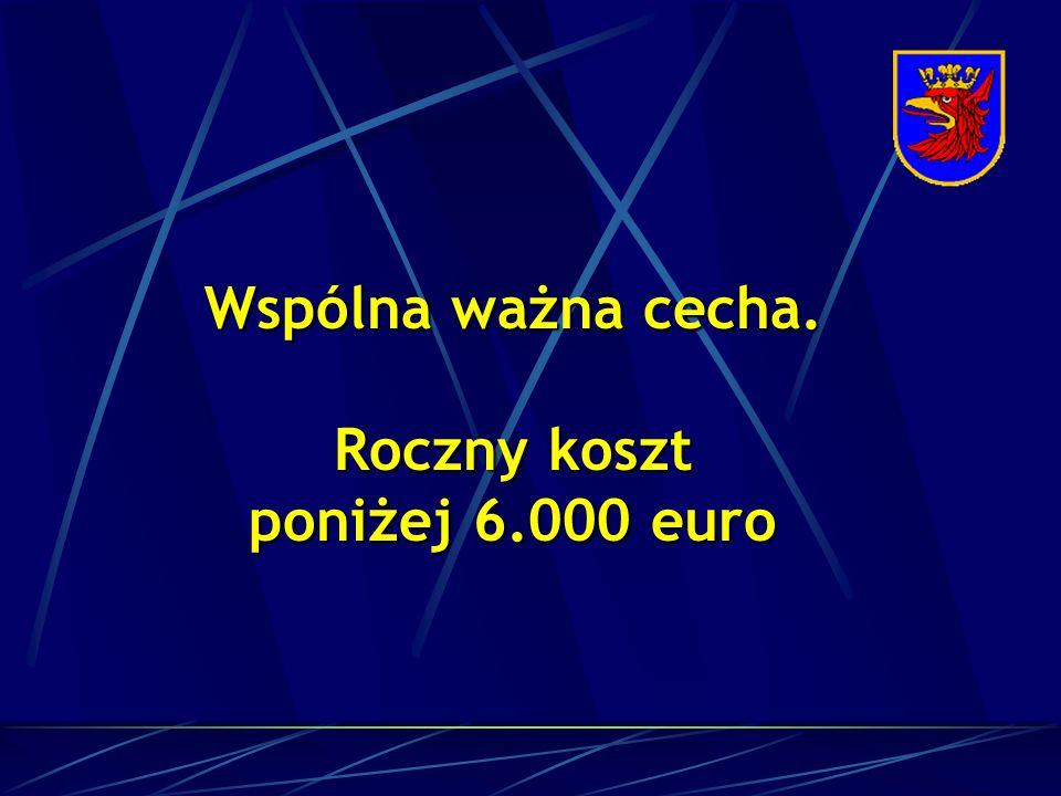 Wspólna ważna cecha. Roczny koszt poniżej 6.000 euro