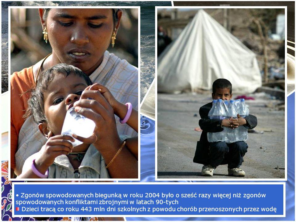 Zgonów spowodowanych biegunką w roku 2004 było o sześć razy więcej niż zgonów spowodowanych konfliktami zbrojnymi w latach 90-tych Dzieci tracą co rok