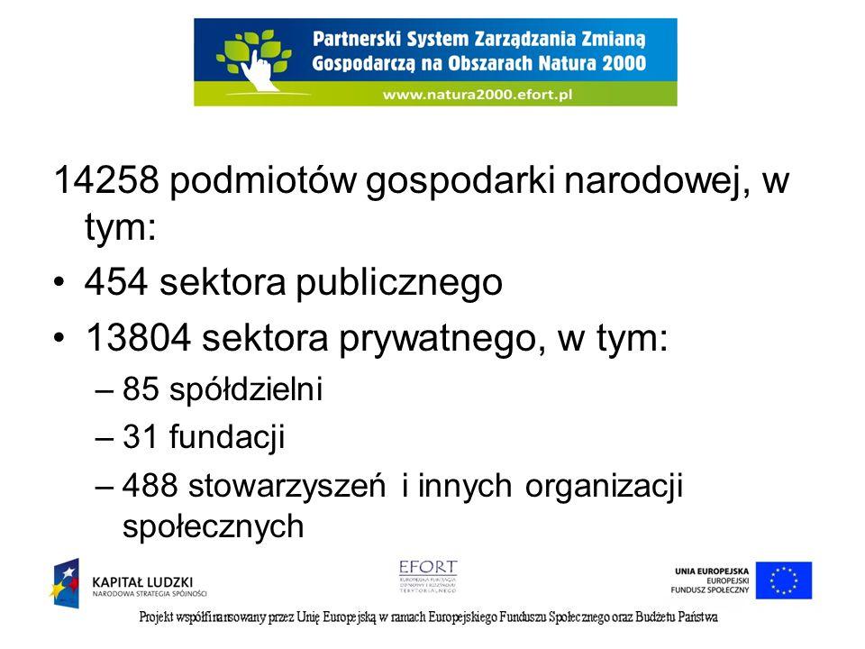 Specyfikacja Wartość podmioty gospodarki narodowej ogółem14258 sektor publiczny - ogółem454 sektor publiczny - państwowe i samorządowe jednostki prawa budżetowego351 sektor publiczny - spółki handlowe17 sektor prywatny - ogółem13804 sektor prywatny - osoby fizyczne prowadzące działalność gospodarczą11502 sektor prywatny - spółki handlowe589 sektor prywatny - spółki handlowe z udziałem kapitału zagranicznego64 sektor prywatny - spółdzielnie85 sektor prywatny - fundacje31 sektor prywatny - stowarzyszenia i organizacje społeczne488