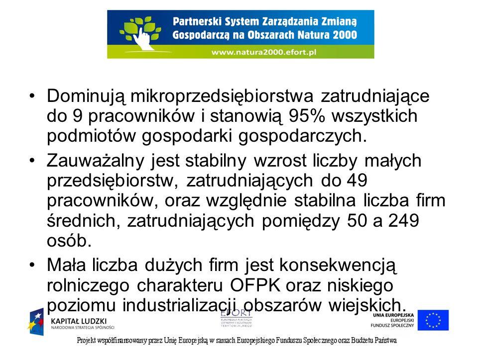 Działalność koncentrowała się i nadal się koncentruje przede wszystkim w obrębie 2 sektorów gospodarki, to jest usług (70,8%) oraz przemysłu i budownictwa (24,6%).