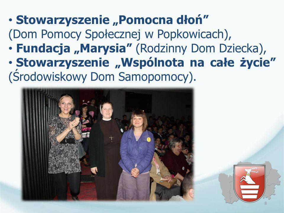 Powiat kraśnicki prowadzi współpracę z organizacjami pozarządowymi w oparciu o Roczne programy współpracy, które przed przyjęciem przez Radę Powiatu są każdorazowo poddawane procedurze społecznej konsultacji w formie bezpośredniego spotkania z przedstawicielami organizacji.