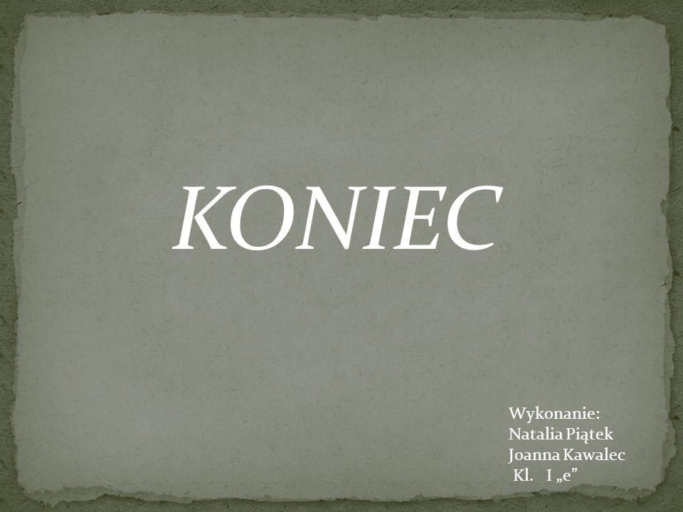 Wykonanie: Natalia Piątek Joanna Kawalec Kl. I e KONIEC