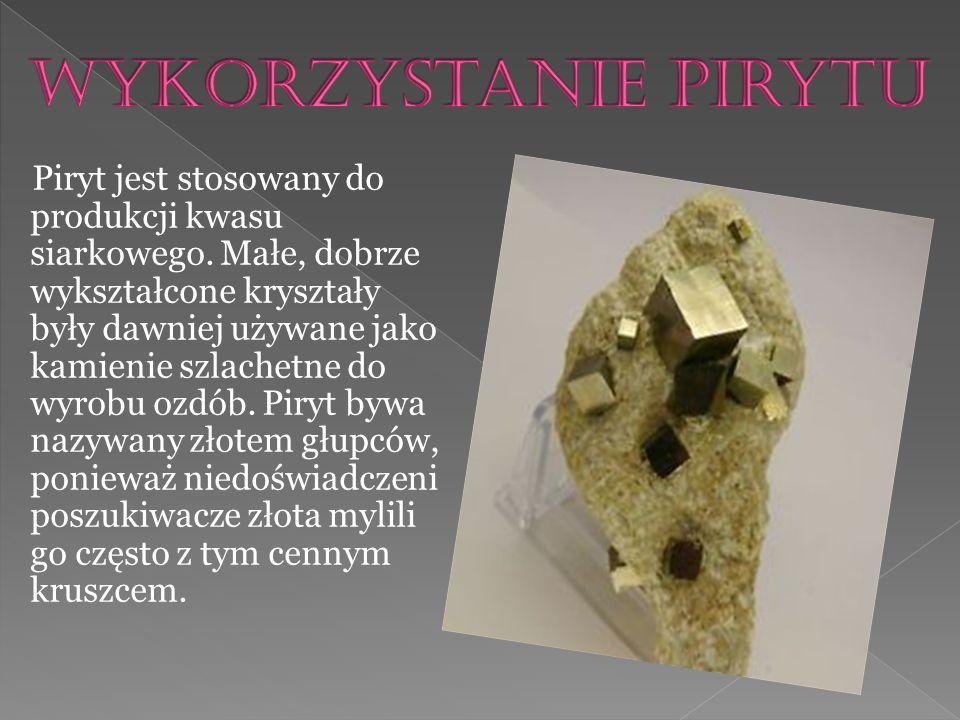 Amonity to podgromada wymarłych głowonogów, przeważnie o symetrycznej, płaskospiralnej skorupie.