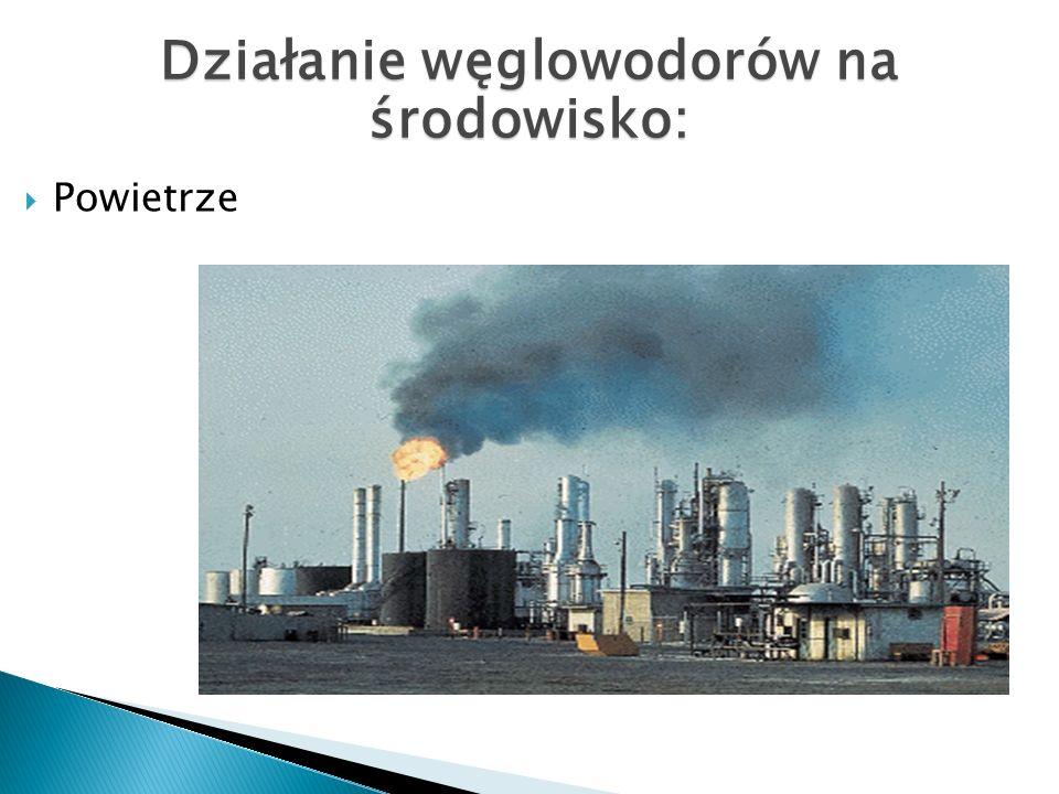 Powietrze Działanie węglowodorów na środowisko: