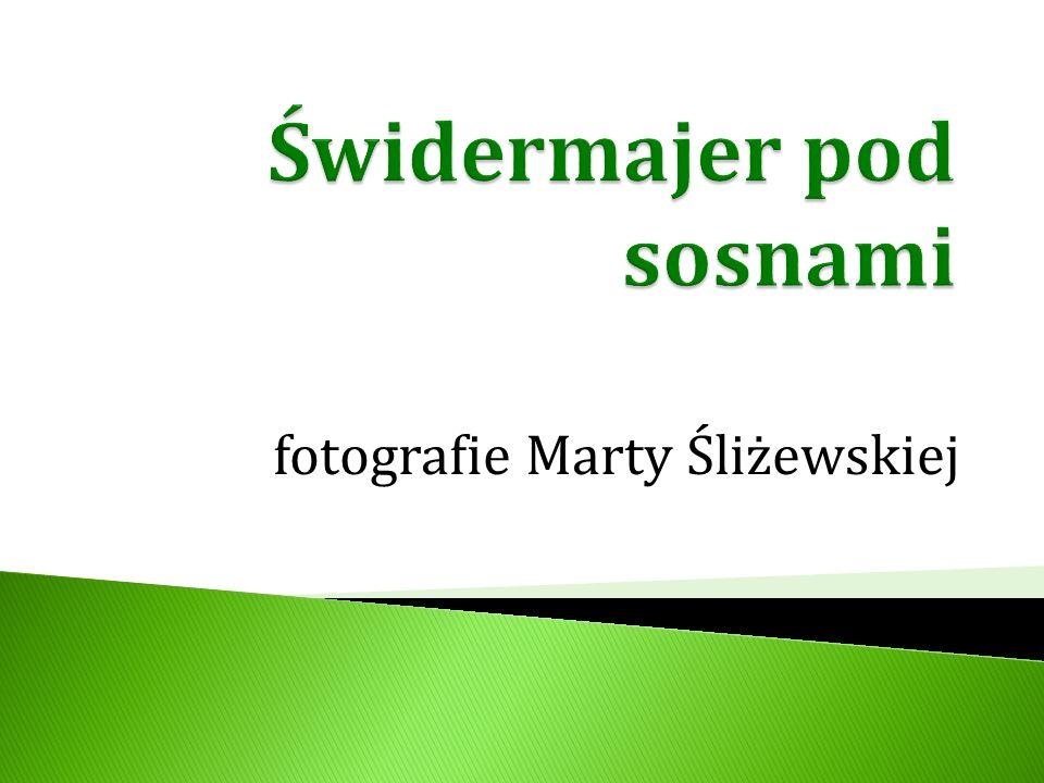 fotografie Marty Śliżewskiej