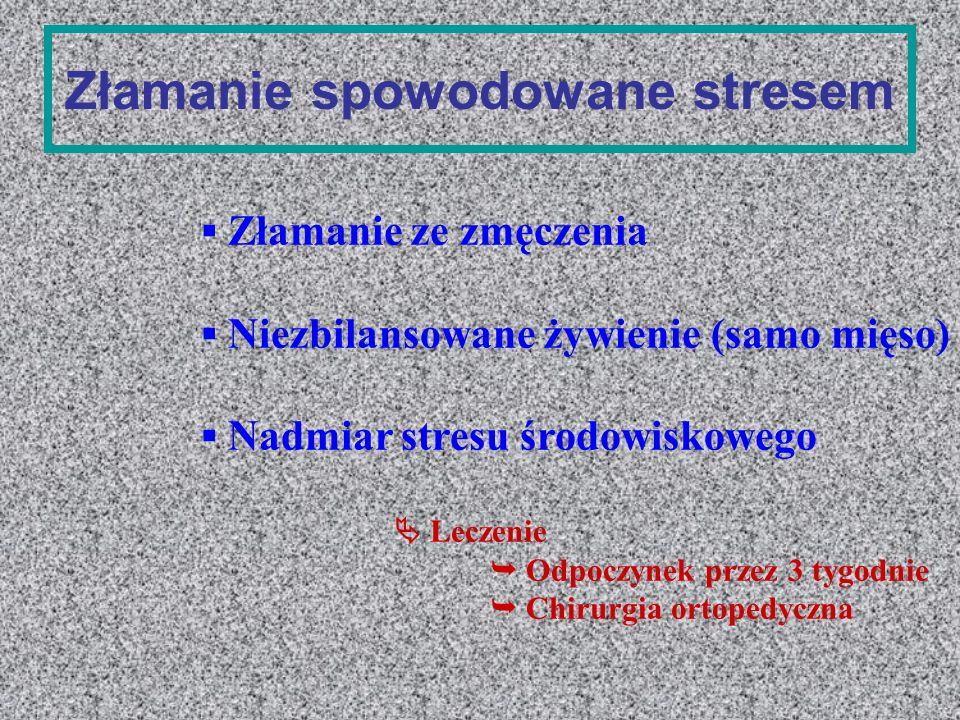Złamanie spowodowane stresem Złamanie ze zmęczenia Niezbilansowane żywienie (samo mięso) Nadmiar stresu środowiskowego Leczenie Odpoczynek przez 3 tyg