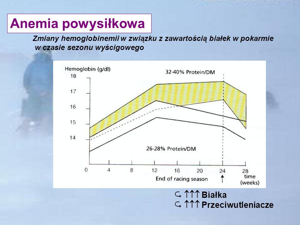 Anemia powysiłkowa Białka Przeciwutleniacze Zmiany hemoglobinemii w związku z zawartością białek w pokarmie w czasie sezonu wyścigowego