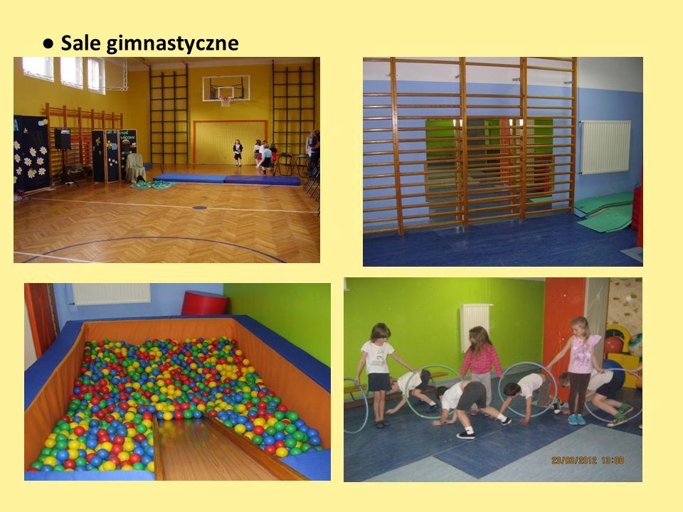2 place zabaw -dzieci spędzają czas nie tylko na nowym placu zabaw, -ale równie chętnie przebywają na starym placu, położonym w ogrodzie