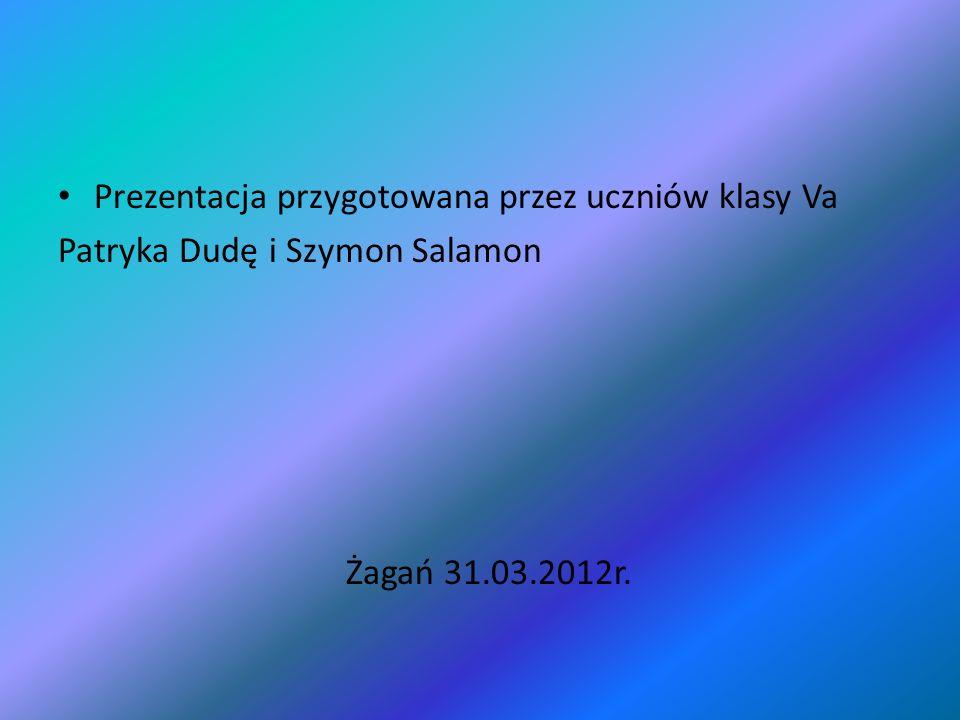 Prezentacja przygotowana przez uczniów klasy Va Patryka Dudę i Szymon Salamon Żagań 31.03.2012r.