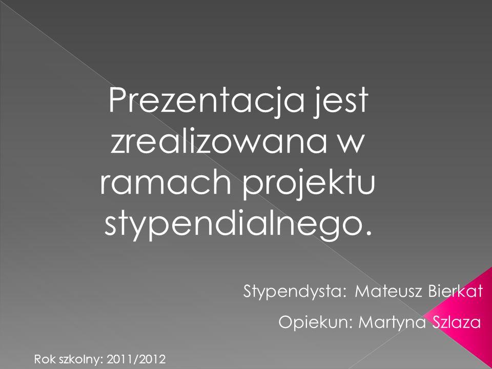 Stypendysta: Mateusz Bierkat Prezentacja jest zrealizowana w ramach projektu stypendialnego.