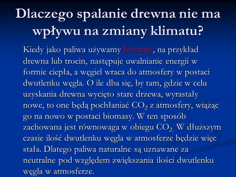 Dlaczego spalanie drewna nie ma wpływu na zmiany klimatu? Kiedy jako paliwa używamy biomasy, na przykład drewna lub trocin, następuje uwalnianie energ