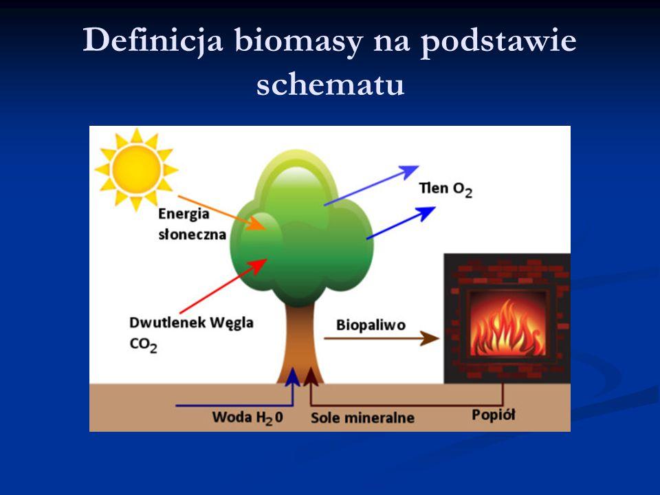 Definicja biomasy na podstawie schematu