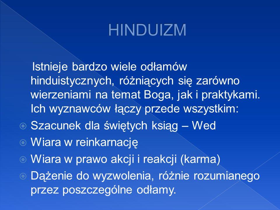 Istnieje bardzo wiele odłamów hinduistycznych, różniących się zarówno wierzeniami na temat Boga, jak i praktykami. Ich wyznawców łączy przede wszystki