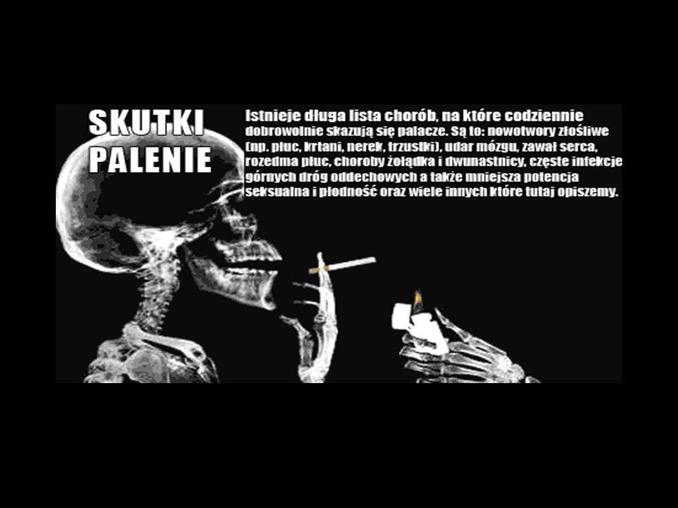 Mateusz Ostrowski Sebastian Strzylak