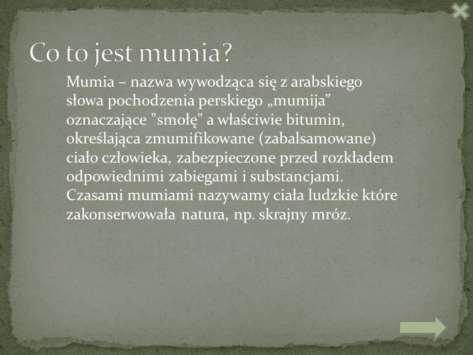Mumia – nazwa wywodząca się z arabskiego słowa pochodzenia perskiego mumija oznaczające smołę a właściwie bitumin, określająca zmumifikowane (zabalsamowane) ciało człowieka, zabezpieczone przed rozkładem odpowiednimi zabiegami i substancjami.
