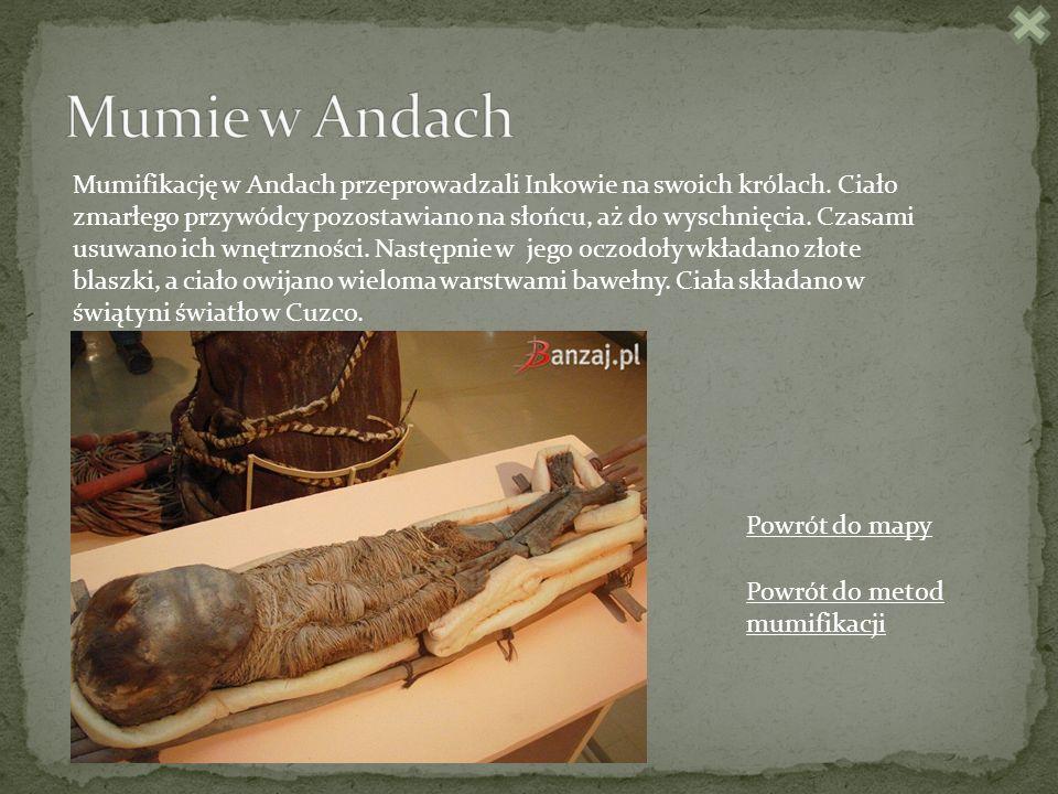 Mumifikację w Andach przeprowadzali Inkowie na swoich królach.