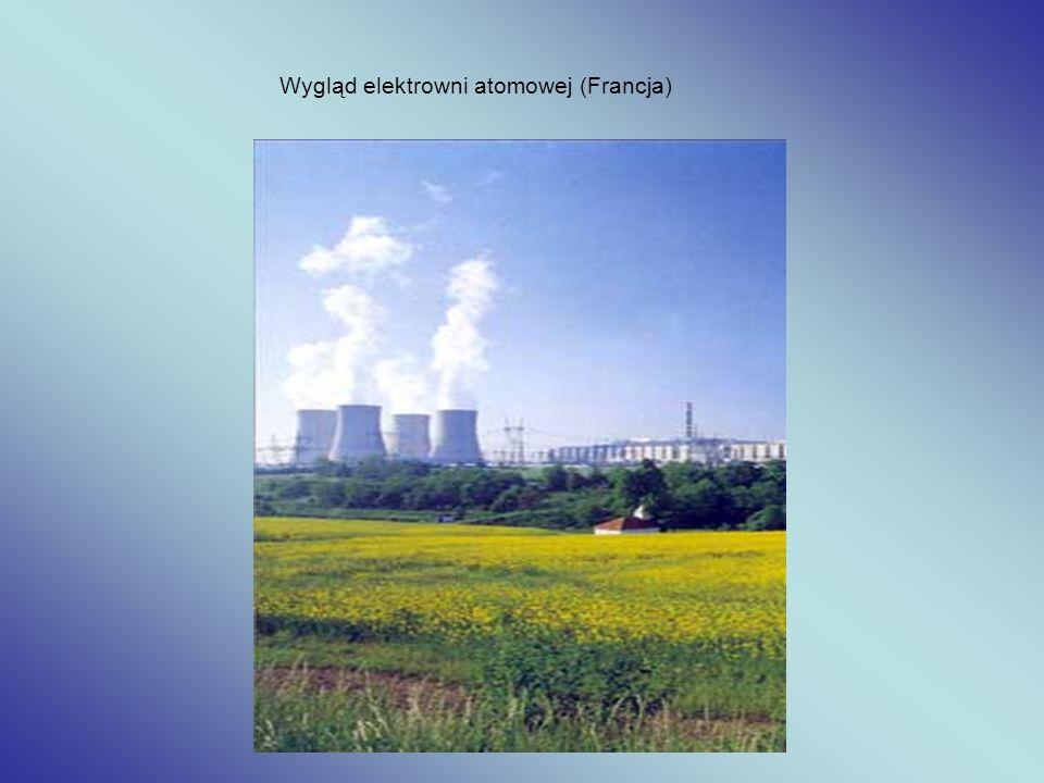 Elektrownia jądrowa w Polsce Zalety: Energia jądrowa jest najbardziej skondensowanym źródłem energii z jakiego obecnie korzysta człowiek.