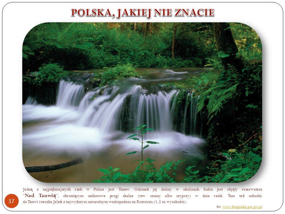 Jedn ą z najpi ę kniejszych rzek w Polsce jest Tanew.