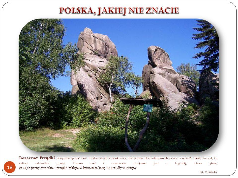 Rezerwat Prz ą dki obejmuje grup ę skał zbudowanych z piaskowca dziwacznie ukształtowanych przez przyrod ę.