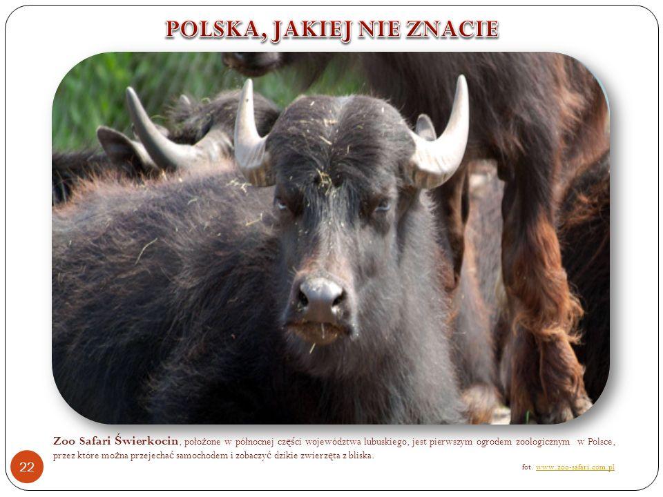 Zoo Safari Ś wierkocin, poło ż one w północnej cz ęś ci województwa lubuskiego, jest pierwszym ogrodem zoologicznym w Polsce, przez które mo ż na przejecha ć samochodem i zobaczy ć dzikie zwierz ę ta z bliska.