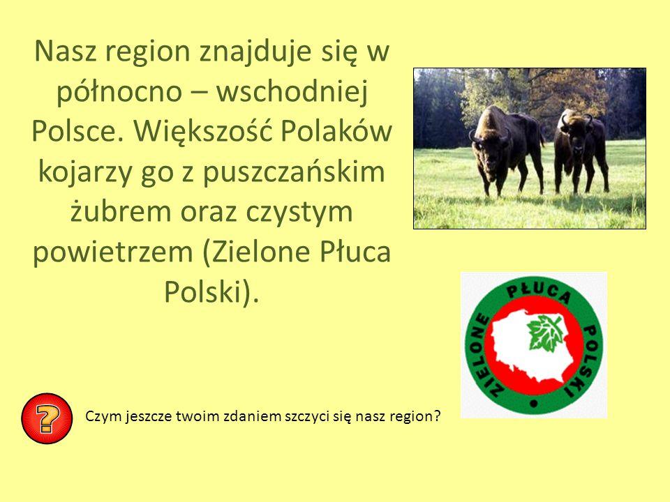 Nasz region znajduje się w północno – wschodniej Polsce. Większość Polaków kojarzy go z puszczańskim żubrem oraz czystym powietrzem (Zielone Płuca Pol