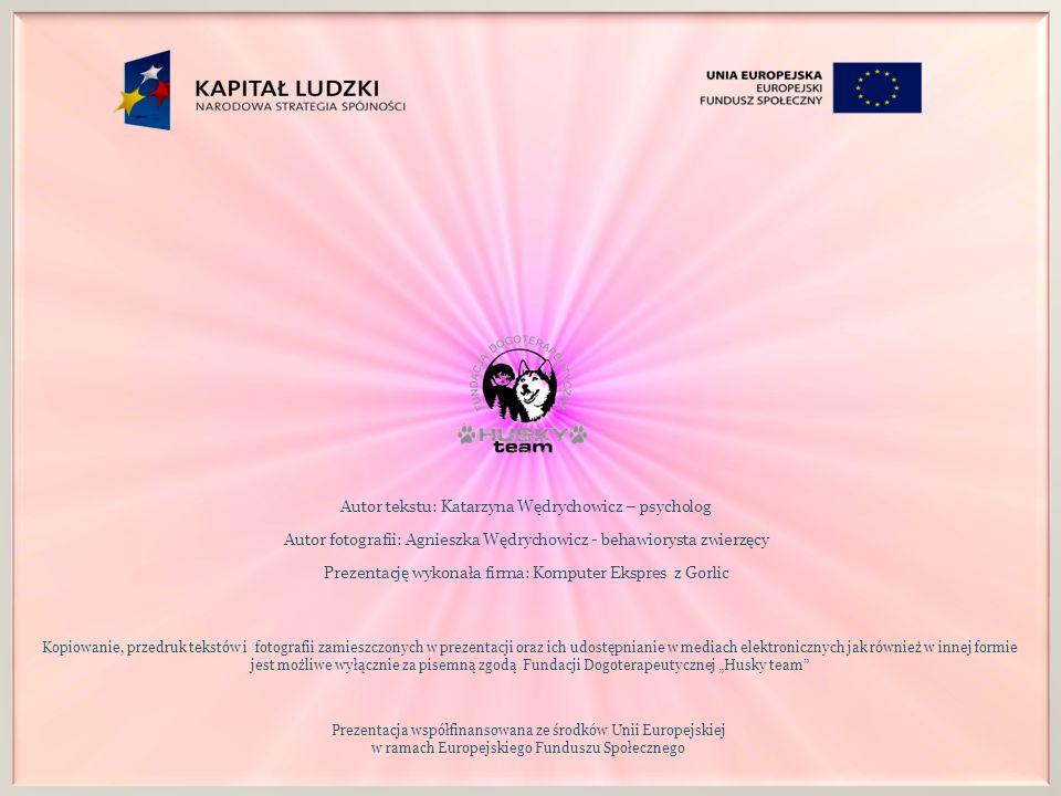 Autor tekstu: Katarzyna Wędrychowicz – psycholog Autor fotografii: Agnieszka Wędrychowicz - behawiorysta zwierzęcy Prezentację wykonała firma: Kompute