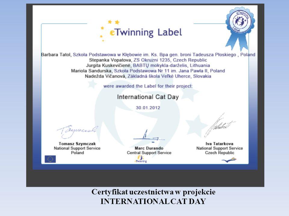 Certyfikat uczestnictwa w projekcie INTERNATIONAL CAT DAY