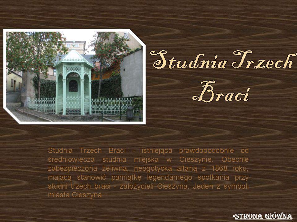 Studnia Trzech Braci - istniejąca prawdopodobnie od średniowiecza studnia miejska w Cieszynie. Obecnie zabezpieczona żeliwną, neogotycką altaną z 1868