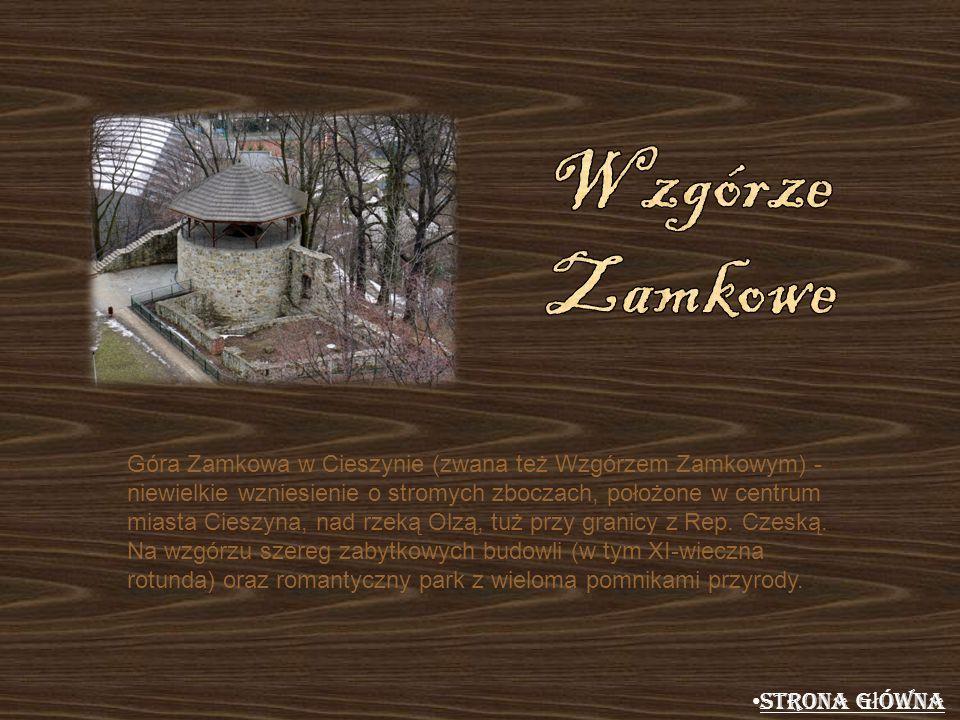 Góra Zamkowa w Cieszynie (zwana też Wzgórzem Zamkowym) - niewielkie wzniesienie o stromych zboczach, położone w centrum miasta Cieszyna, nad rzeką Olz