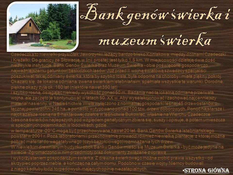 Czadeczka to niewielki przysiółek Jaworzynki, leżący bardzo blisko Koniakowa, między dolinami Czadeczki i Krężelki. Do granicy ze Słowacją, w linii pr