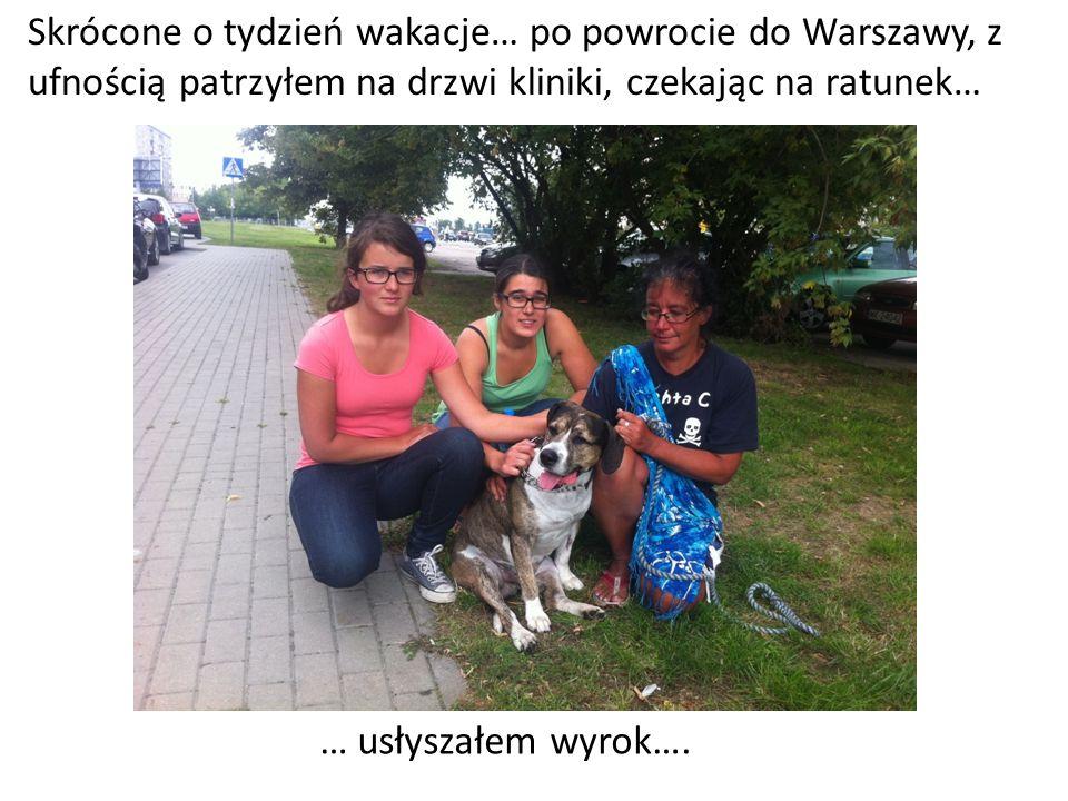 Skrócone o tydzień wakacje… po powrocie do Warszawy, z ufnością patrzyłem na drzwi kliniki, czekając na ratunek… … usłyszałem wyrok….