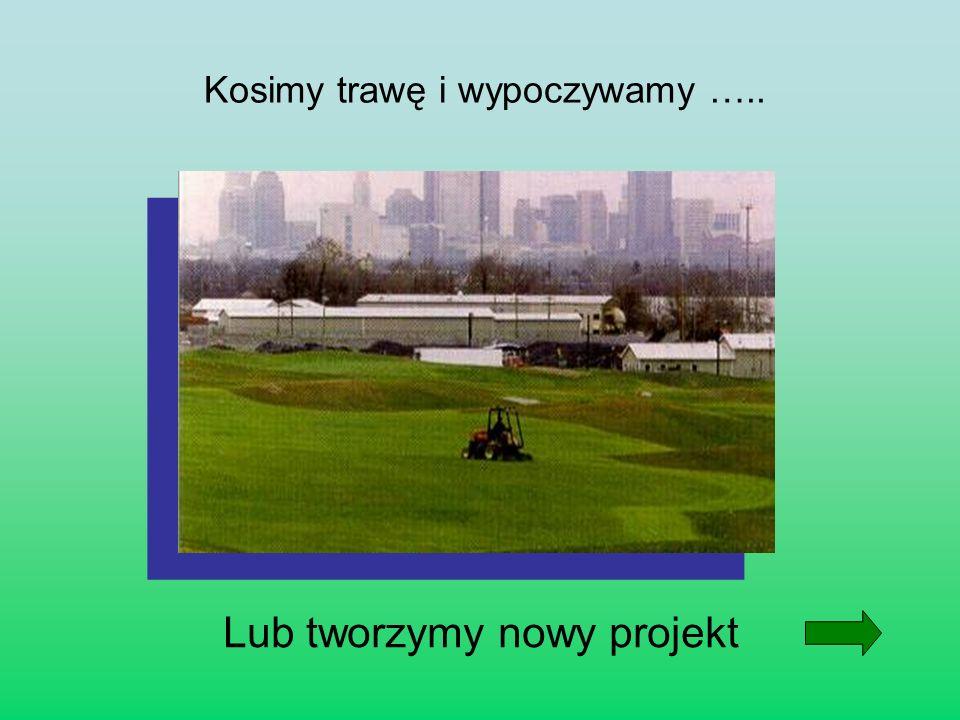 Kosimy trawę i wypoczywamy ….. Lub tworzymy nowy projekt