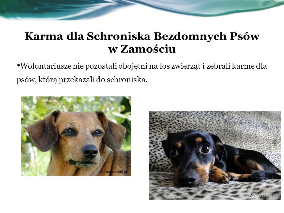 Karma dla Schroniska Bezdomnych Psów w Zamościu Wolontariusze nie pozostali obojętni na los zwierząt i zebrali karmę dla psów, którą przekazali do sch