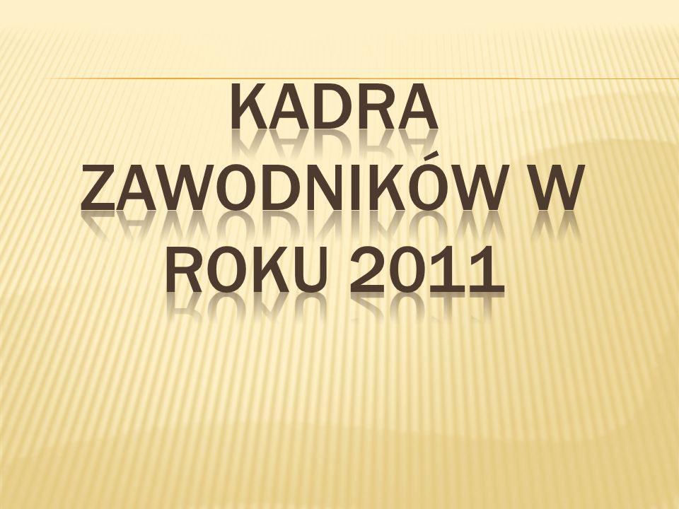 Karierę sportową rozpoczynał we Wrzosie Międzyborów.