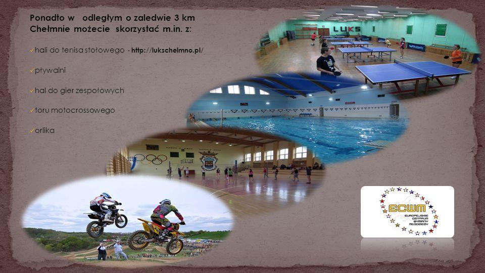 Ponadto w odległym o zaledwie 3 km Chełmnie możecie skorzystać m.in. z: hali do tenisa stołowego - http://lukschelmno.pl/ pływalni hal do gier zespoło