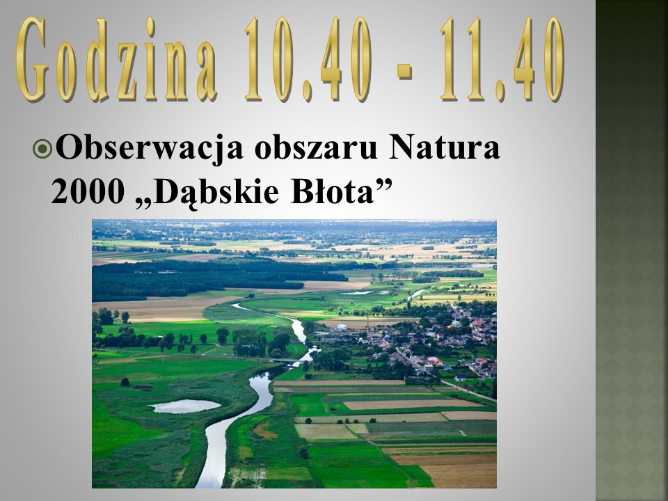 Obserwacja obszaru Natura 2000 Dąbskie Błota