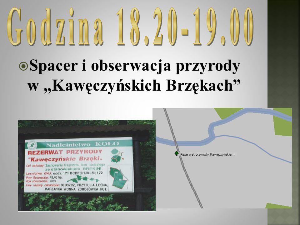 Spacer i obserwacja przyrody w Kawęczyńskich Brzękach