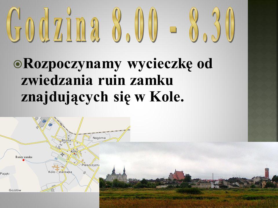 Rozpoczynamy wycieczkę od zwiedzania ruin zamku znajdujących się w Kole.