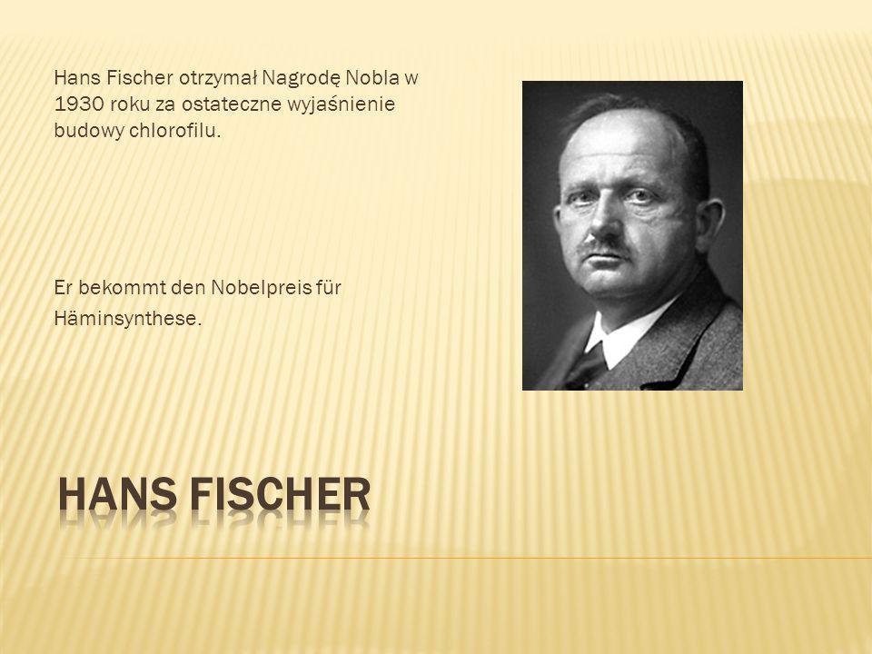 Hans Fischer otrzymał Nagrodę Nobla w 1930 roku za ostateczne wyjaśnienie budowy chlorofilu. Er bekommt den Nobelpreis für Häminsynthese.