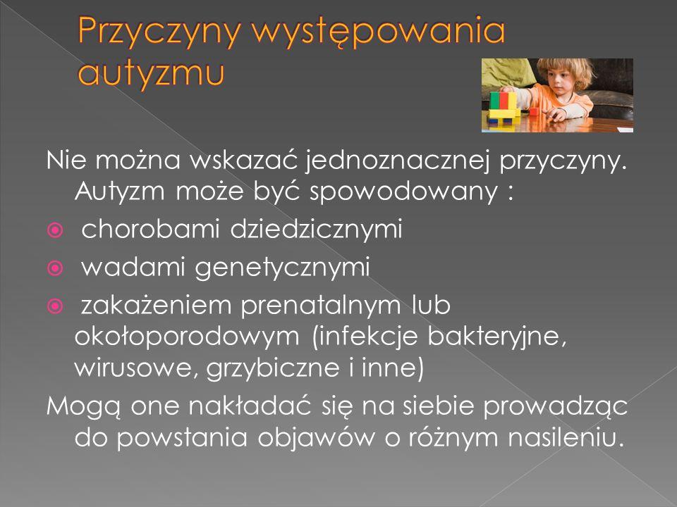 L.Bobkowicz- Lewartowska, Autyzm dziecięcy – zagadnienia diagnozy i terapii.
