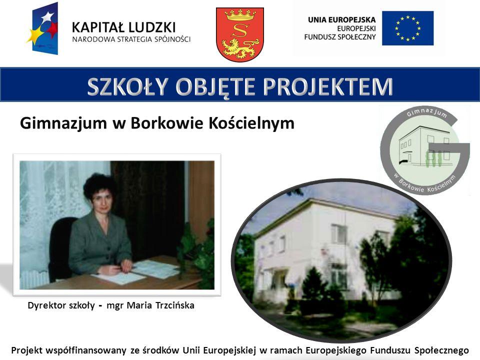 Projekt współfinansowany ze środków Unii Europejskiej w ramach Europejskiego Funduszu Społecznego Gimnazjum w Borkowie Kościelnym Dyrektor szkoły - mgr Maria Trzcińska